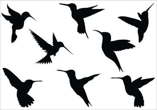 Hummingbird clip art hummingbird silhouette clip art pack
