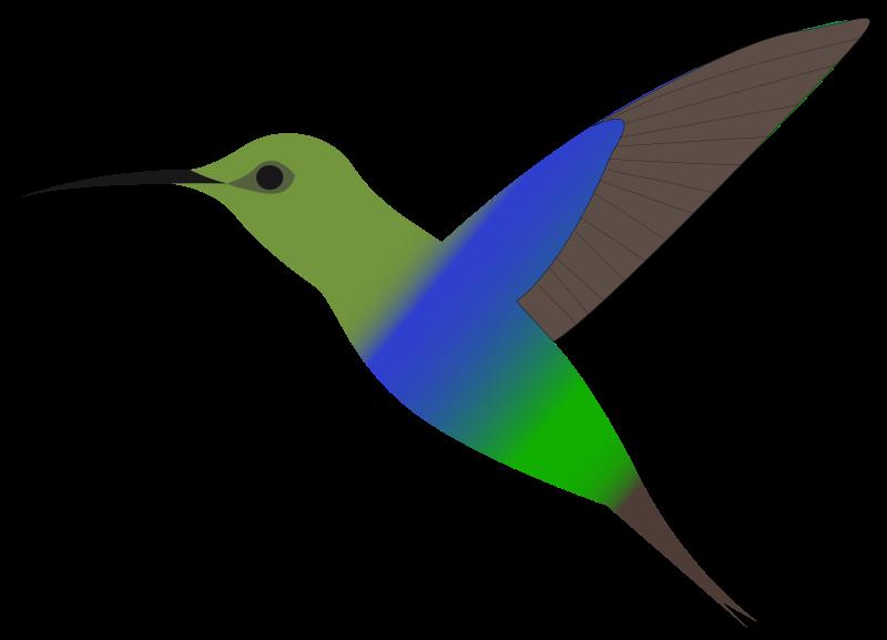 Hummingbird clip art