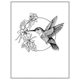 Hummingbird clipart 4