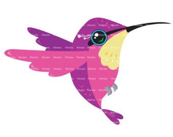 Hummingbird clipart 6