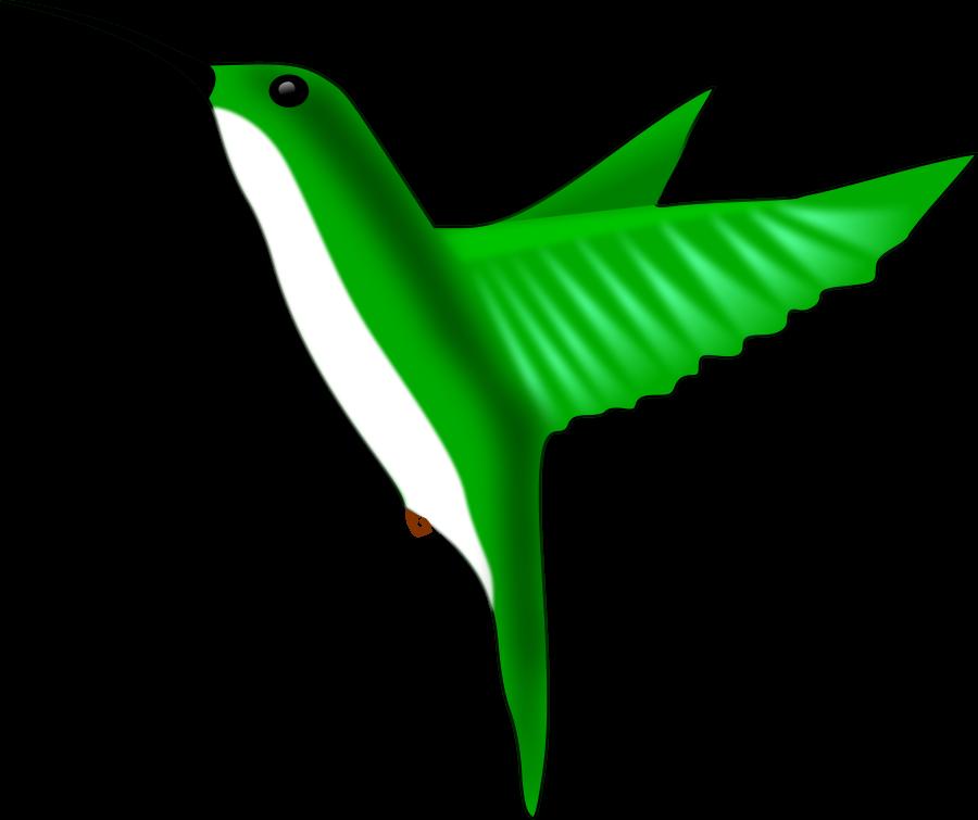 Hummingbird clipart vector clip art free design