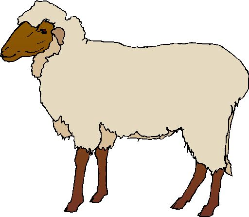 Lamb clipart 2