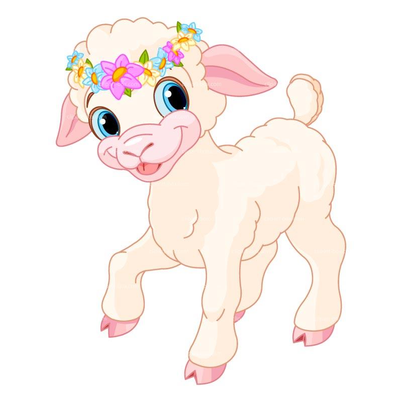 Lamb clipart 8