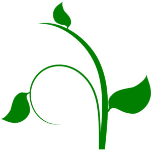 Leafy vine clipart clipart