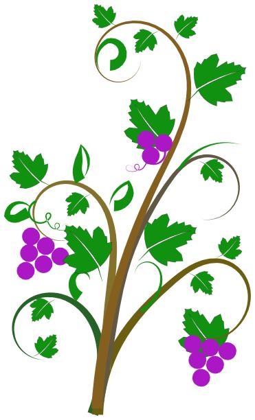 Vine clip art plants assorted vine clip art html