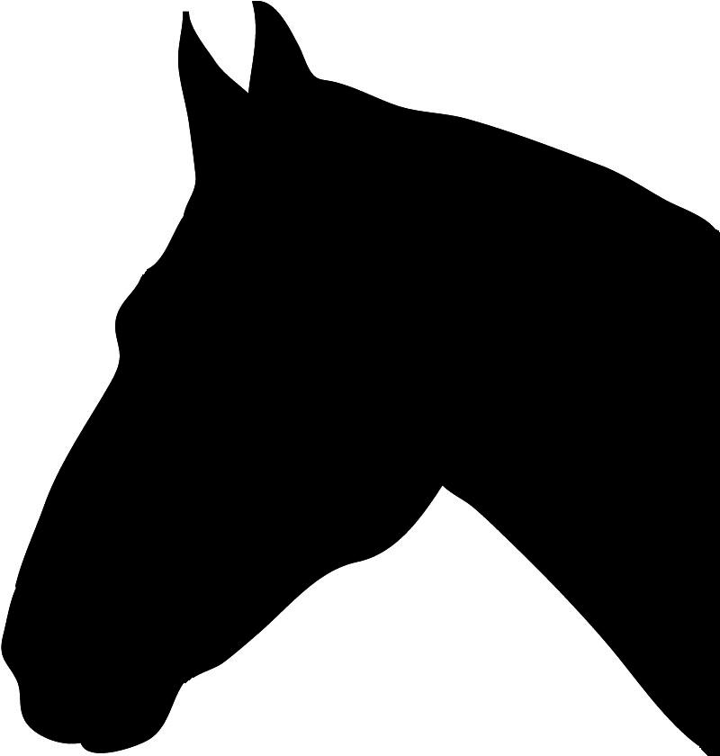 Arabian horse head clip art images