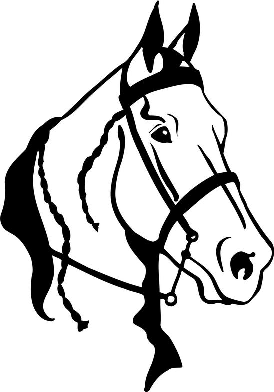 Arabian horse head clipart horse clip art