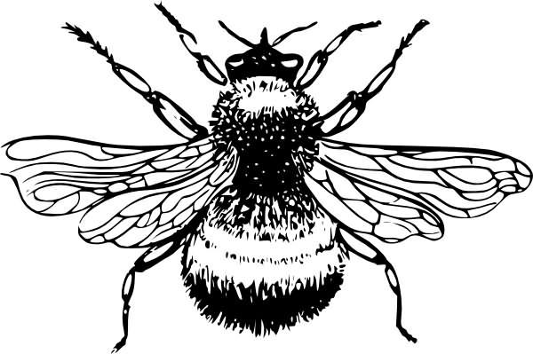 Bumblebee tattoo clip art clipart clipart