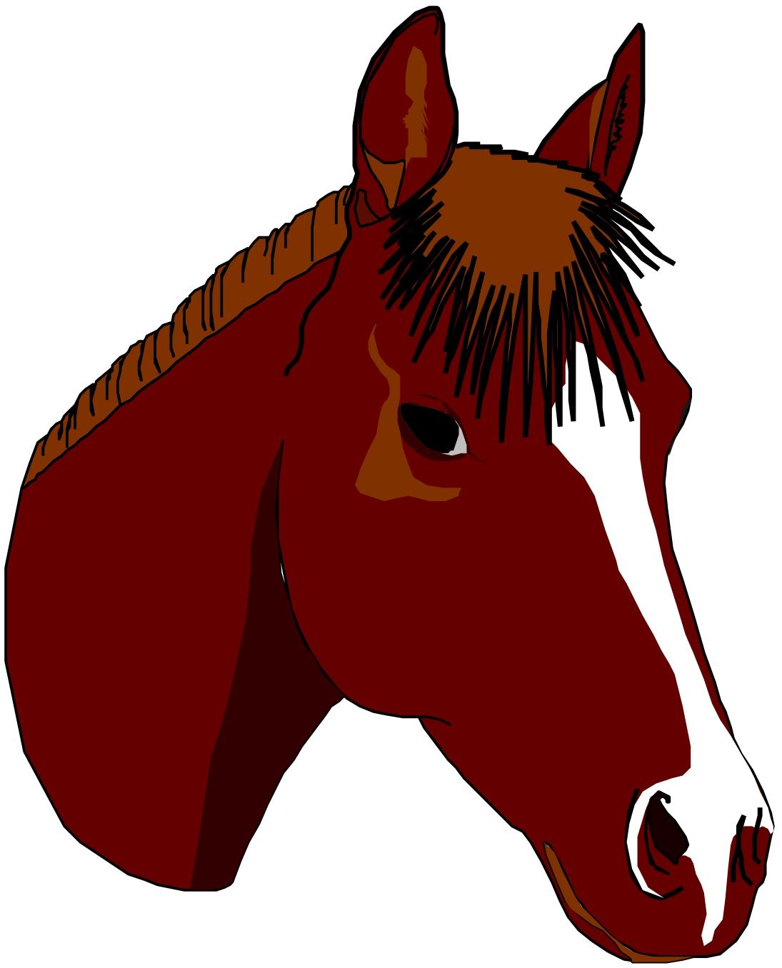 Clip art horse head clipart