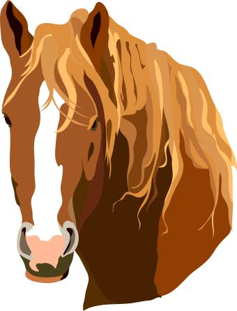 Horse head free clipart horse clipart