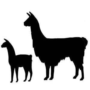 Llama clip art 2