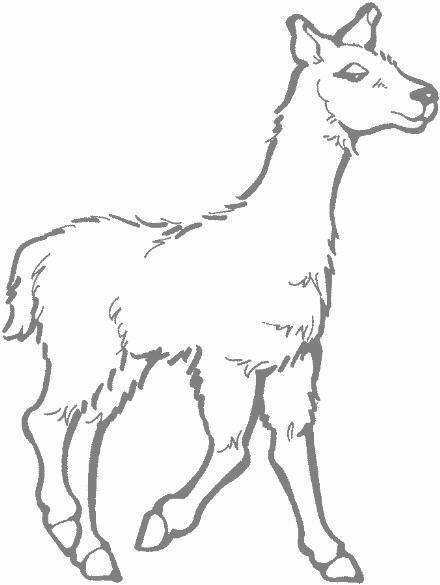 Llama clip art 3