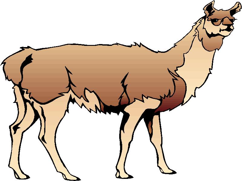 Llama clip art clipart 2