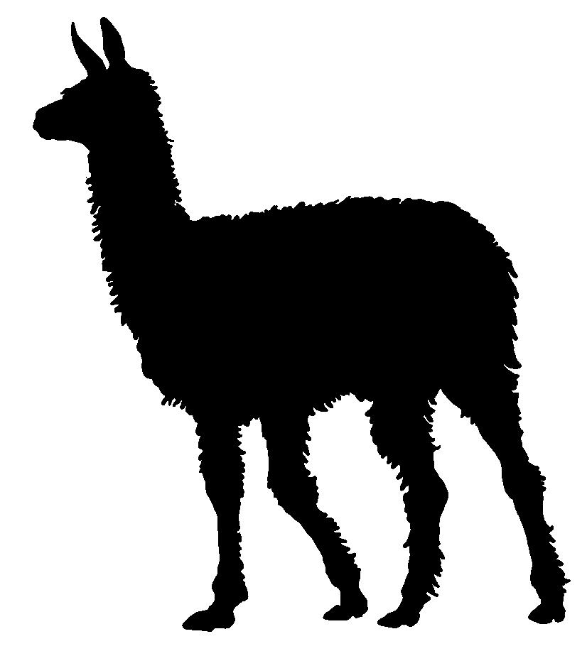 Llama clipart 9