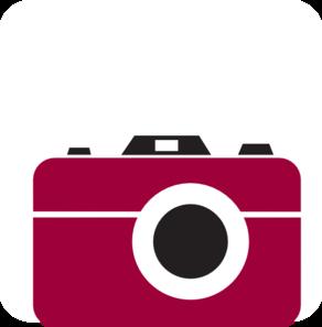 Flash camera shiraz clip art at vector clip art