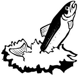 Salmon clip art 2