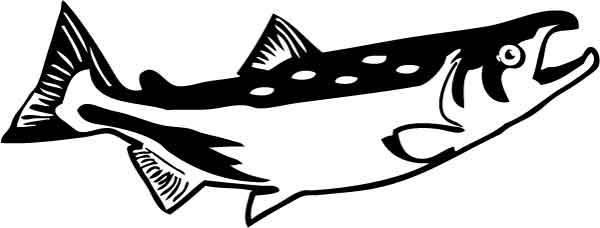 Salmon clip clipart