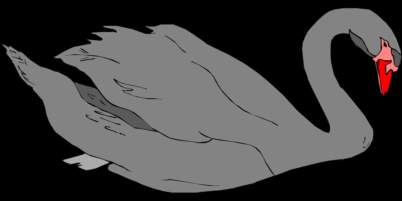 Swan clip art  3