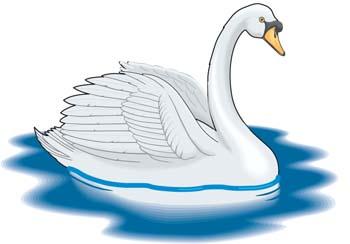 Swan clip art vector swan graphics