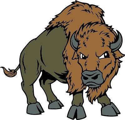 Cliparti1 buffalo clipart