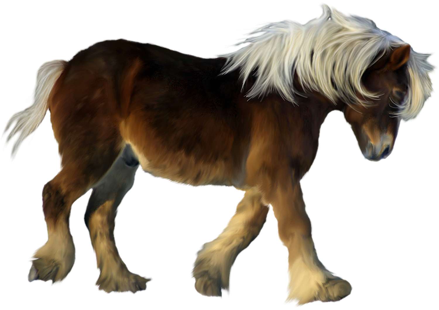 Brown pony 3d clipart 0