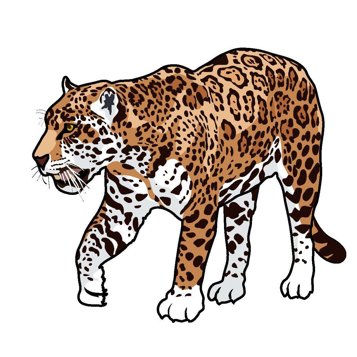 Cliparti1 jaguar clipart