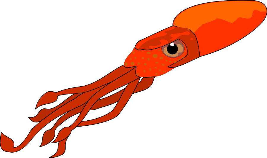 Squid clip art free free clipart images 2