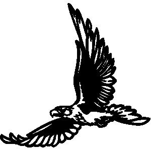 Hawk clip art 2