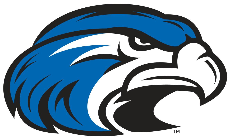 Hawk clipart 9