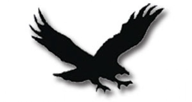 Hawks clip art free clipart images