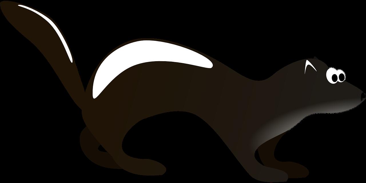 Skunk small mammals clip art