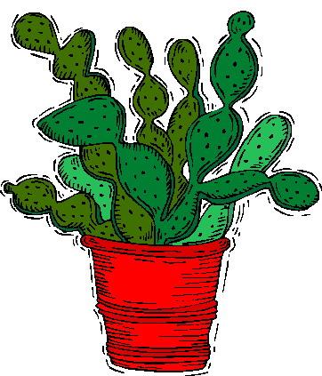 Cactus clip art 11