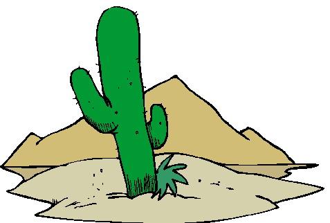 Cactus clip art 13