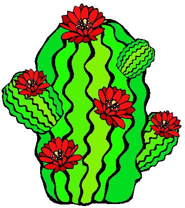 Cactus clip art 6