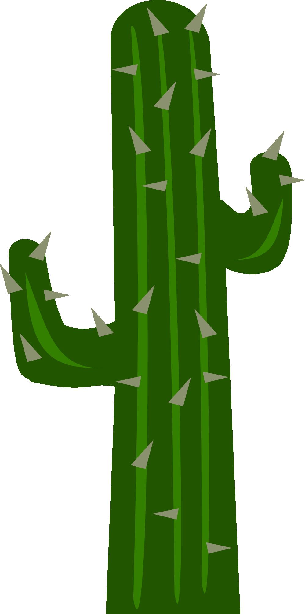 Cactus clip art 7