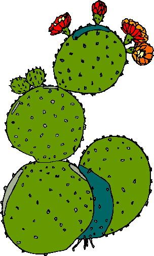 Clip art clip art cactus 3