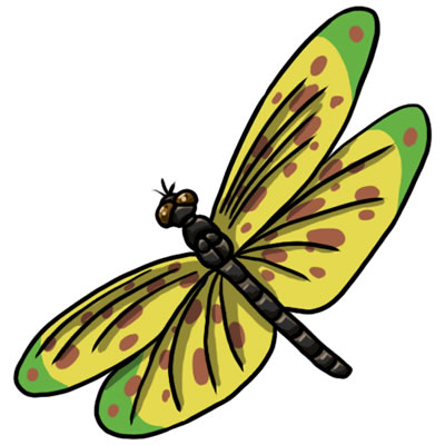 Free dragonfly clip art 7