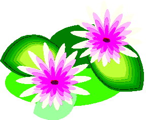 Clip art clip art water lily