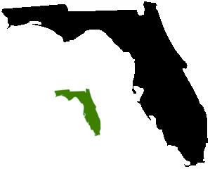 Florida clip art at vector clip art 2