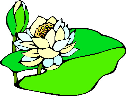 Image free water lily clip art 3