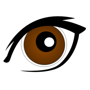 Eyeball brown eyes clipart free clipart images