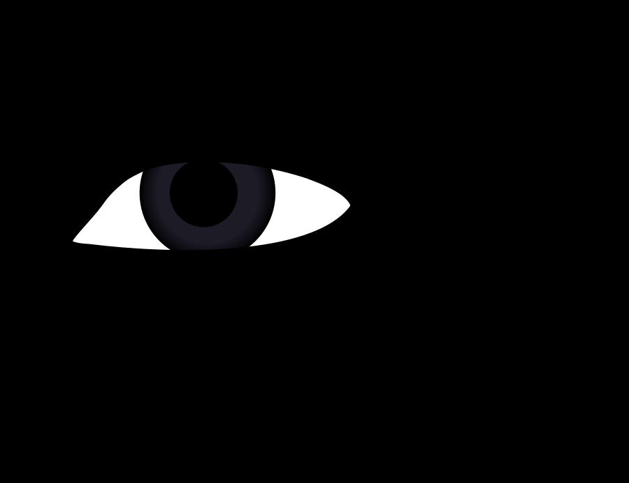 Eyeball eye clip art clipart