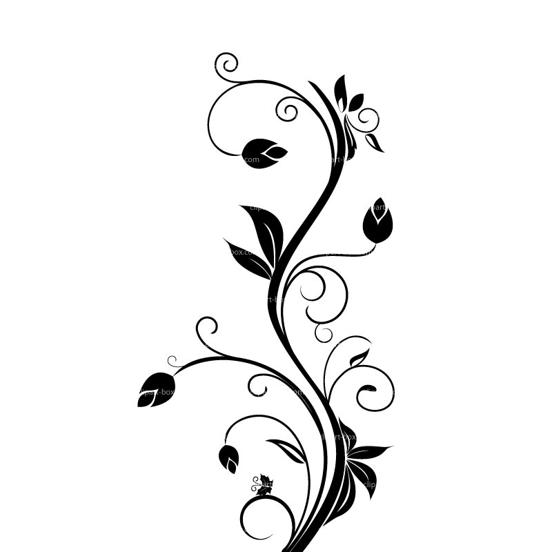 Floral clip art frames free clipart images