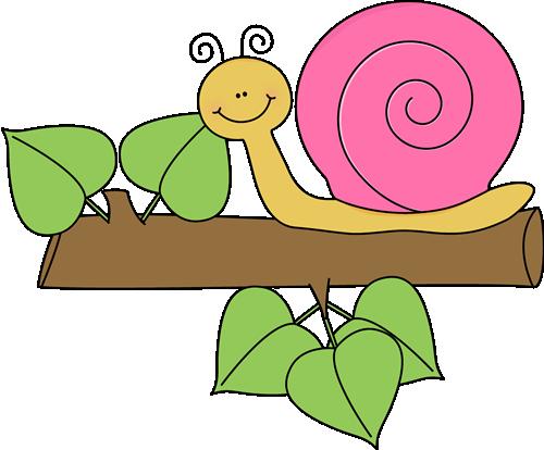 Snail clipart 5