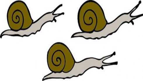 Snail free clip art picture