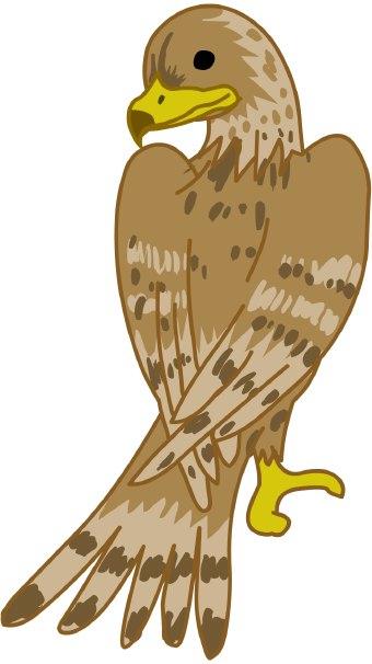 Falcon clip art 4