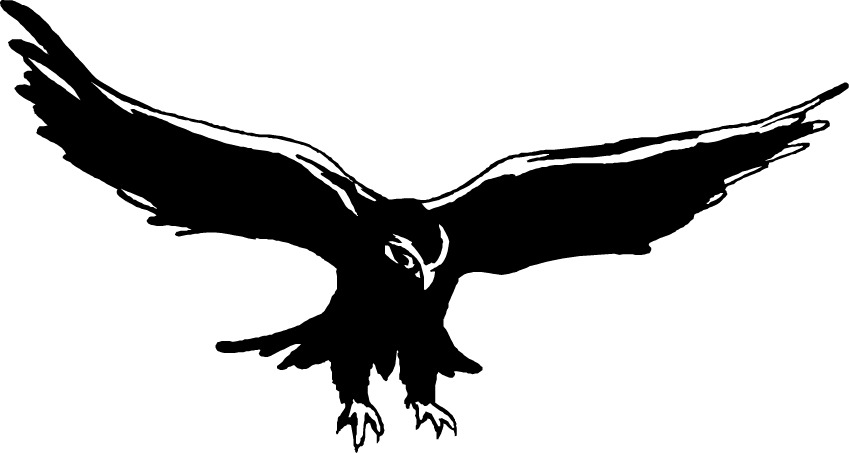 Falcon clip art images free clipart images 2