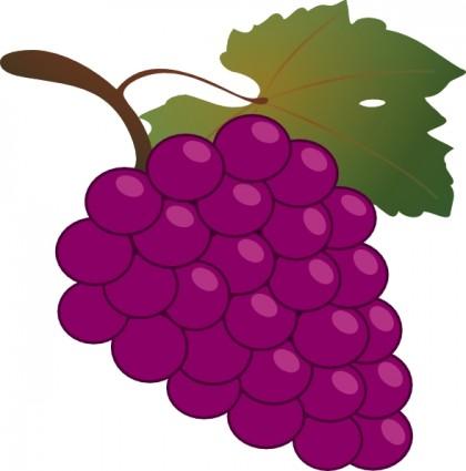 Grape clip art free clipart images