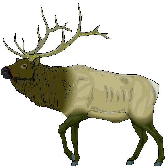 Elk clip art free clipart images 2