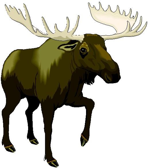 Elk clip art moose dromffl top